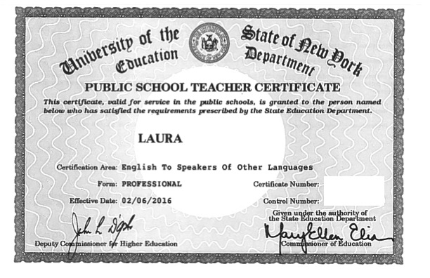 Public School Teacher - Professional Certificate